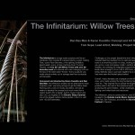 Infinitarium Willow Trees Story
