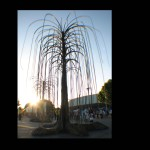 Infinitarium Willow Trees at EDC LA, CA